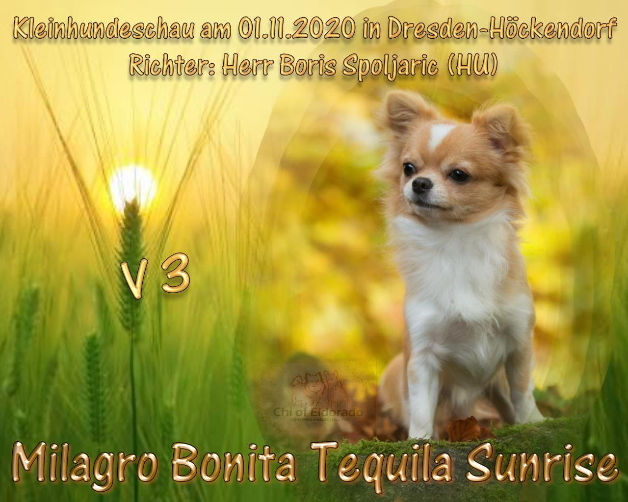 201101 Tequila